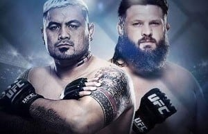 ufc-fight-night-52-mark-hunt-vs-roy-nelson-2