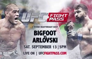 ufc-fight-night-brasilia-bigfoot-silva-vs-arlovski-2