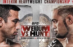 UFC 180 Results
