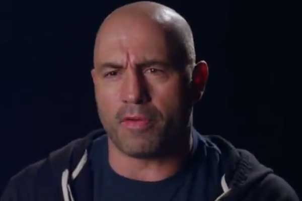 Joe Rogan Ufc Fight