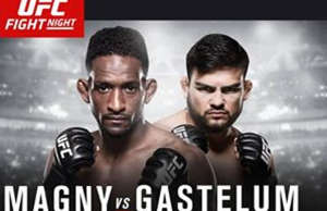 ufc-fight-night-78-results