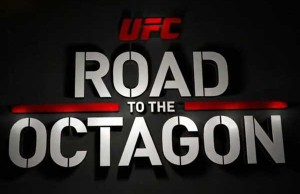ufc-road-to-the-octagon-600x400
