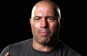joe-rogan-breakdown-2