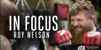 Roy Nelson IN FOCUS