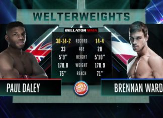 Bellator 183 Free Fight