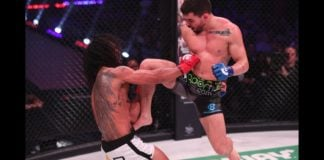 Bellator 183 Highlights