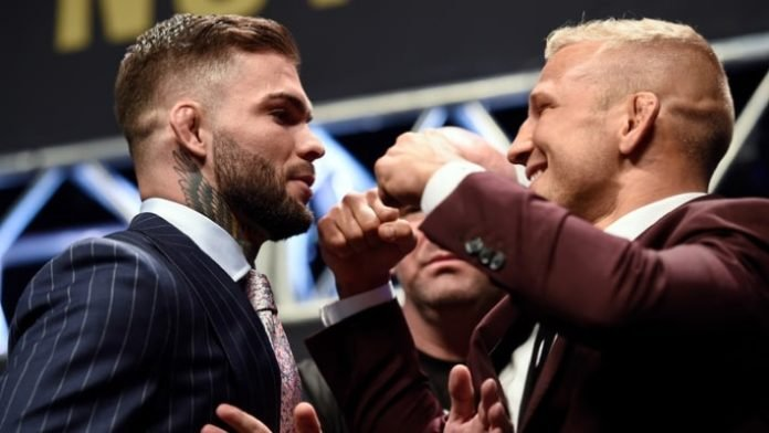 Bout between TJ Dillashaw and Cody Garbrandt finalized for UFC 227