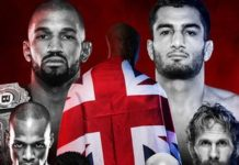 Bellator 200: Carvalho vs. Mousasi