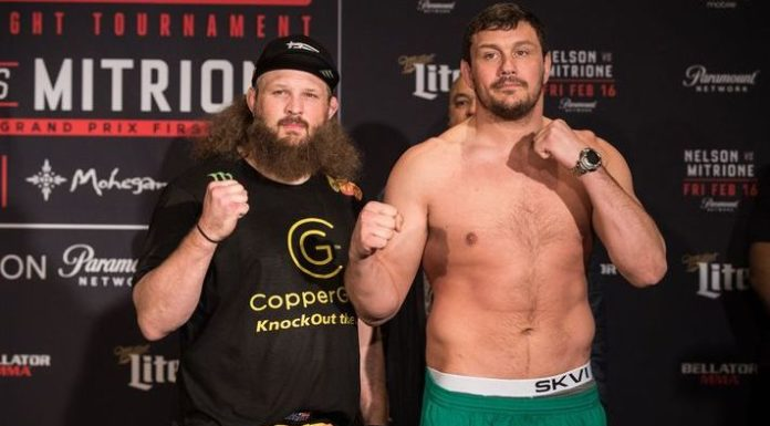 Roy Nelson Matt Mitrione
